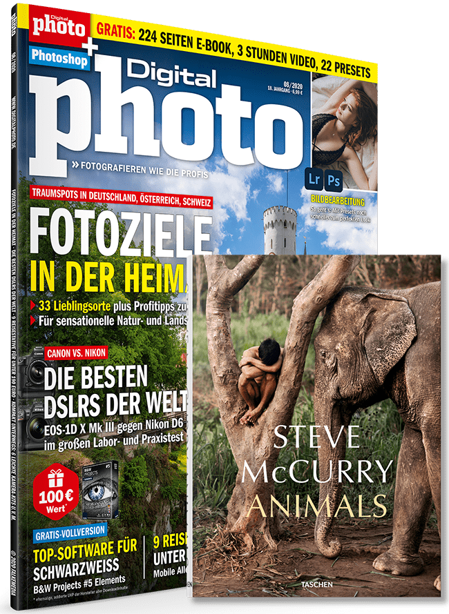 DigitalPhoto Leserumfrage 08/2020